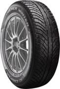 Cooper Discoverer Winter (225/55 R18 102V)