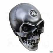 Decorazione (cranio) ALCHEMY GOTHIC - Metalised Alchemist Skull - V41