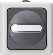 EL BE 560856002 - BLUE ELECTRIC damp room push-button, 1-pole, grey