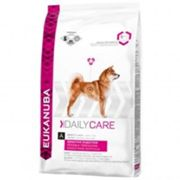 Eukanuba DailyCare Sensitive Digestion - Sacco 12,5 Kg