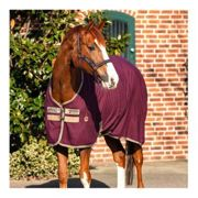 Horseware STABLE SHEET X - Coperta da box fig/navy/tan